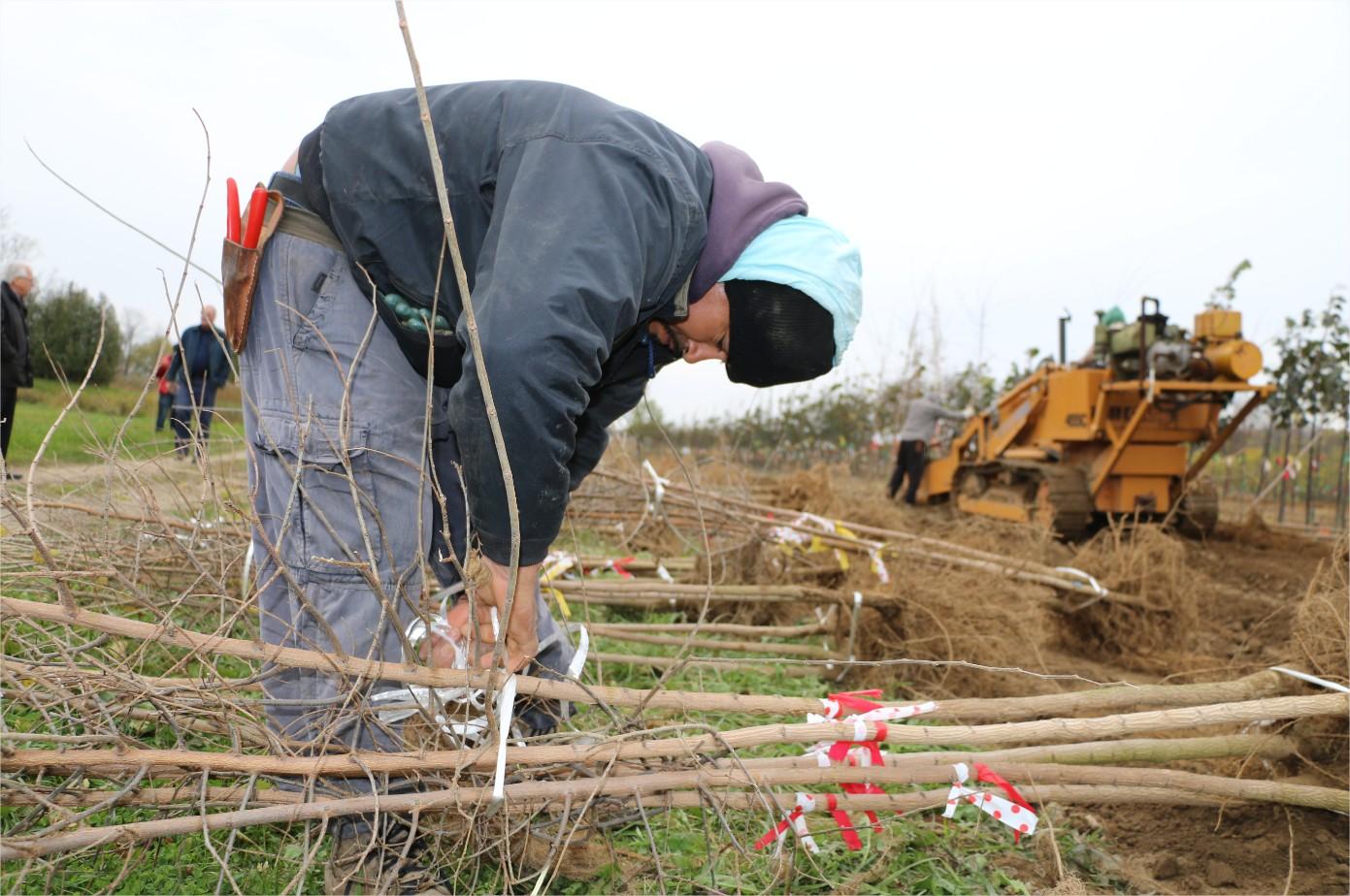 Equipo de Respuesta a la Covid-19 ayuda a jornaleros agrícolas extranjeros en British Columbia